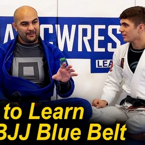 The Most Important Things To Learn In Jiu Jitsu When You Are A BJJ Blue Belt by Mikey Musumeci